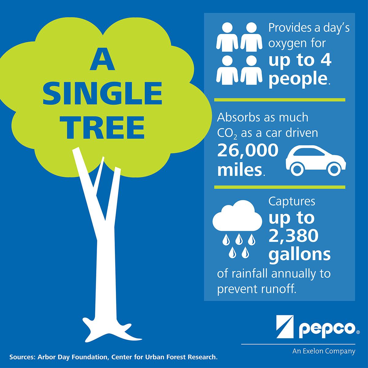 Pepco - Facebook Infographic