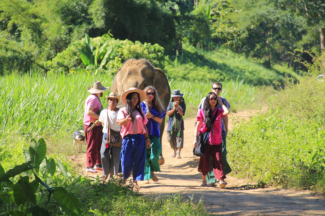 Happy Elephant Home4.JPG