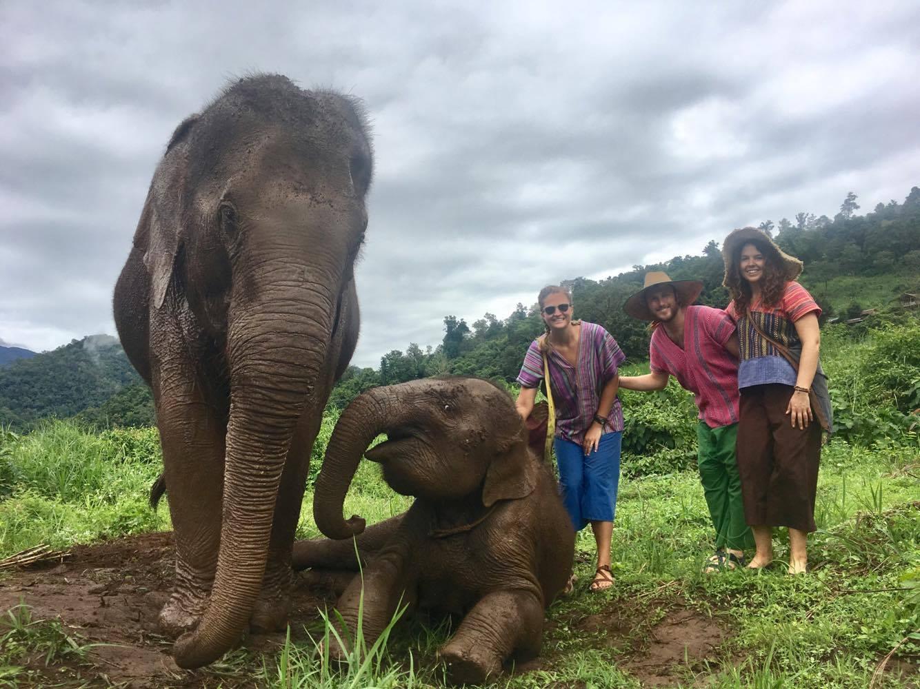 Tourist having a good time with the elephants.jpg