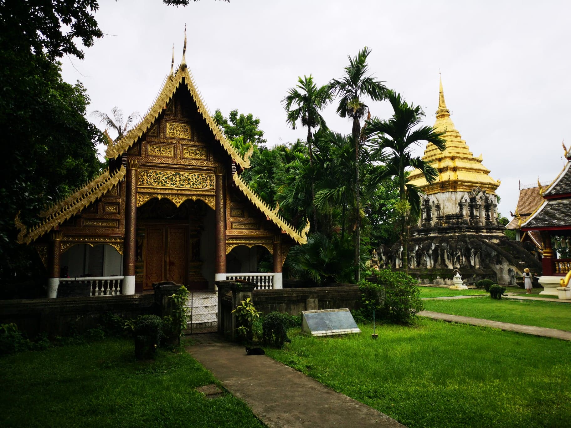 Wat Chiang Man, The oldest temple in Chiang Mai.jpg