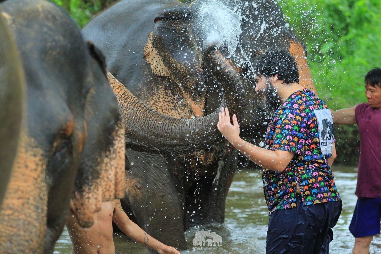 Kanta.Elephant (27).jpeg