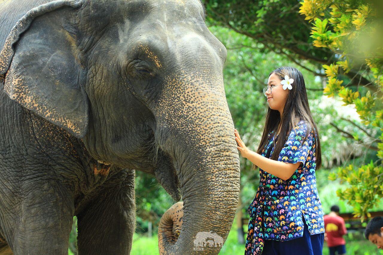 Kanta.Elephant (42).jpeg