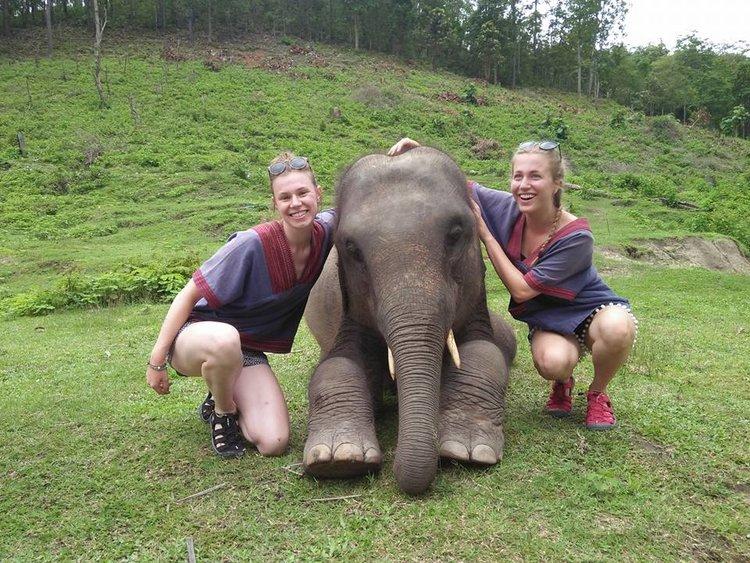 Elephant+Care+&+Grand+Canyon.jpeg