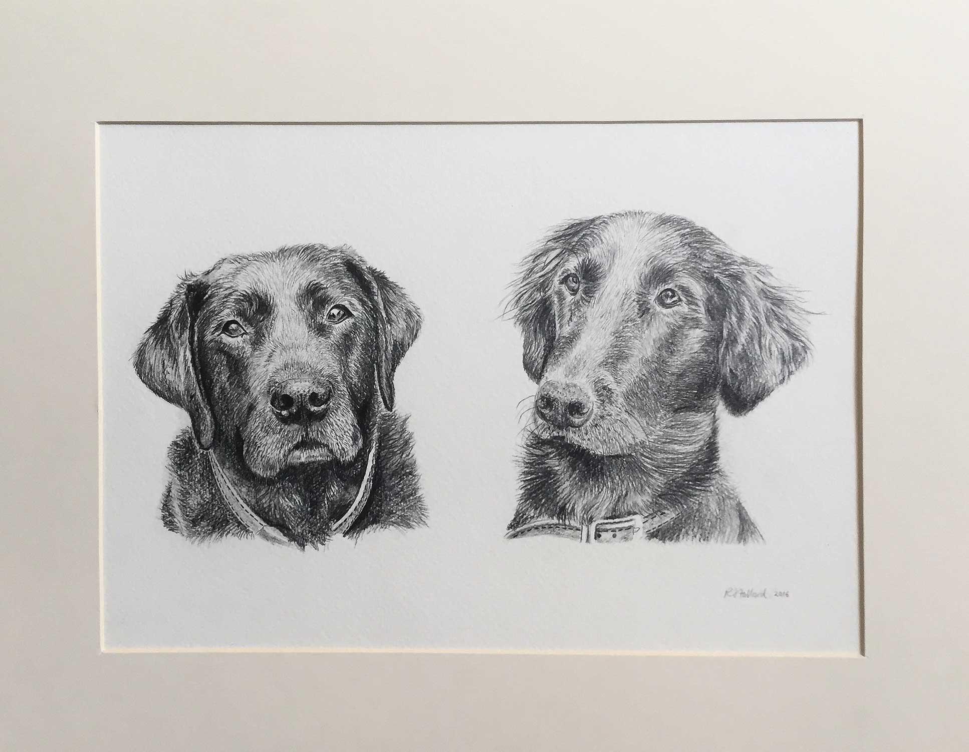 jeannie's-dogs_2.jpg