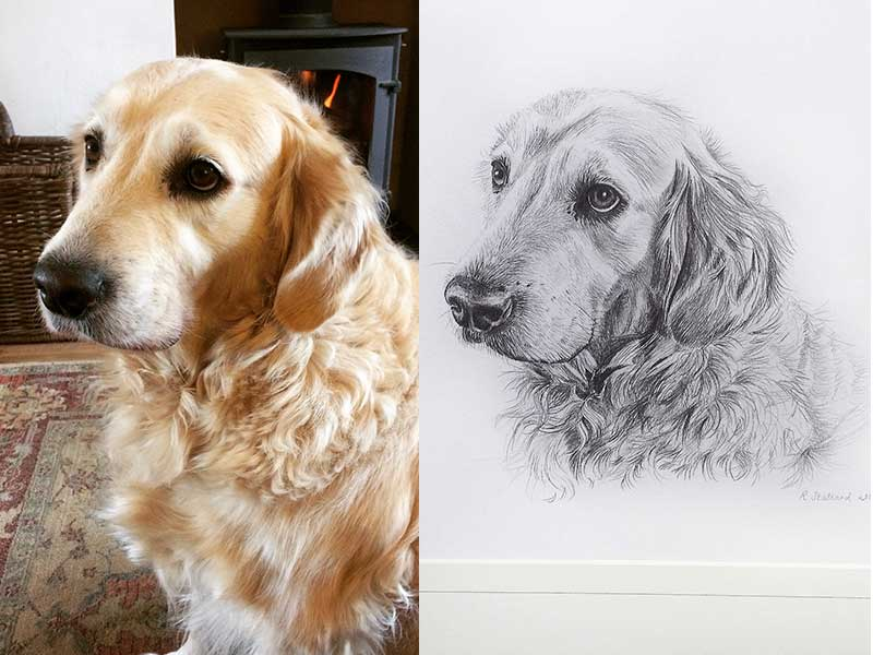 Alfie photo and drawing.JPG