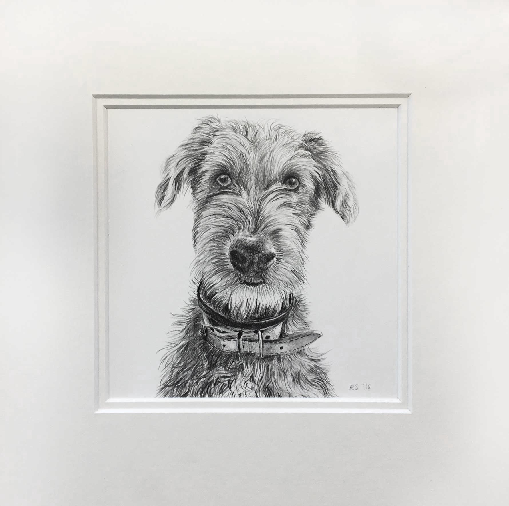 rachel's-dog.jpg