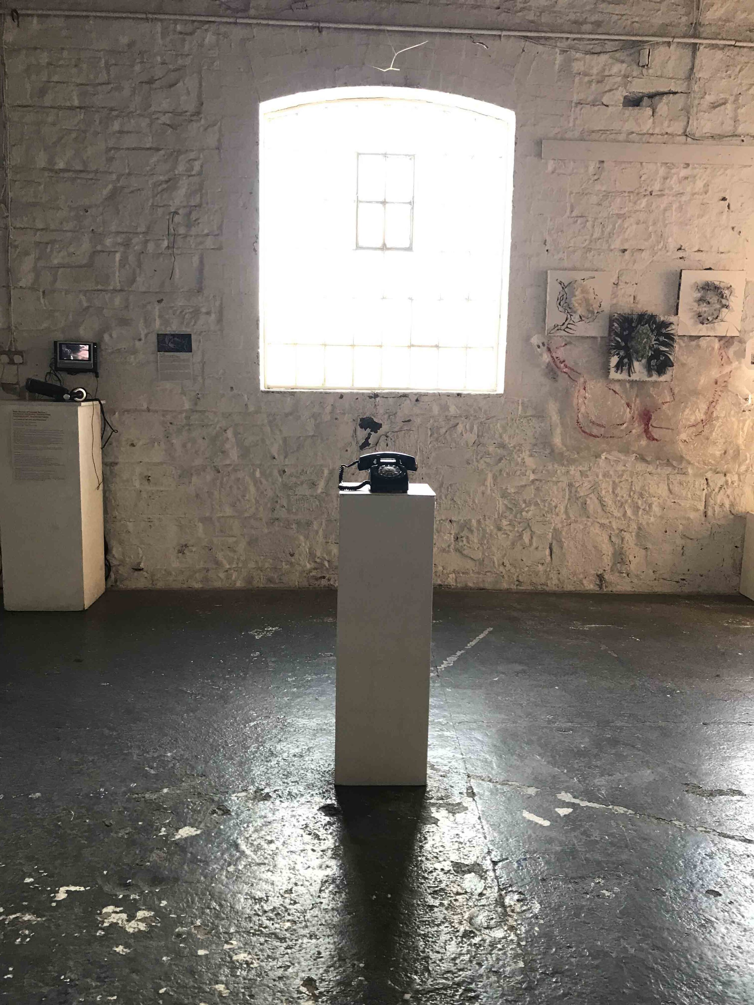 we are all connected, (c) Nicola Anthony, sound art, 2019, full length.JPG