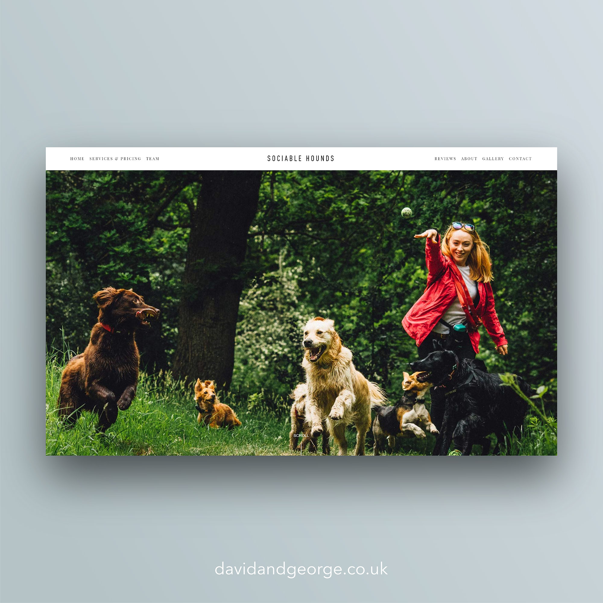 squarespace-website-design-london-edinburgh-uk-david-and-george-sociable-hounds-dog-walking-service-edinburgh.jpg