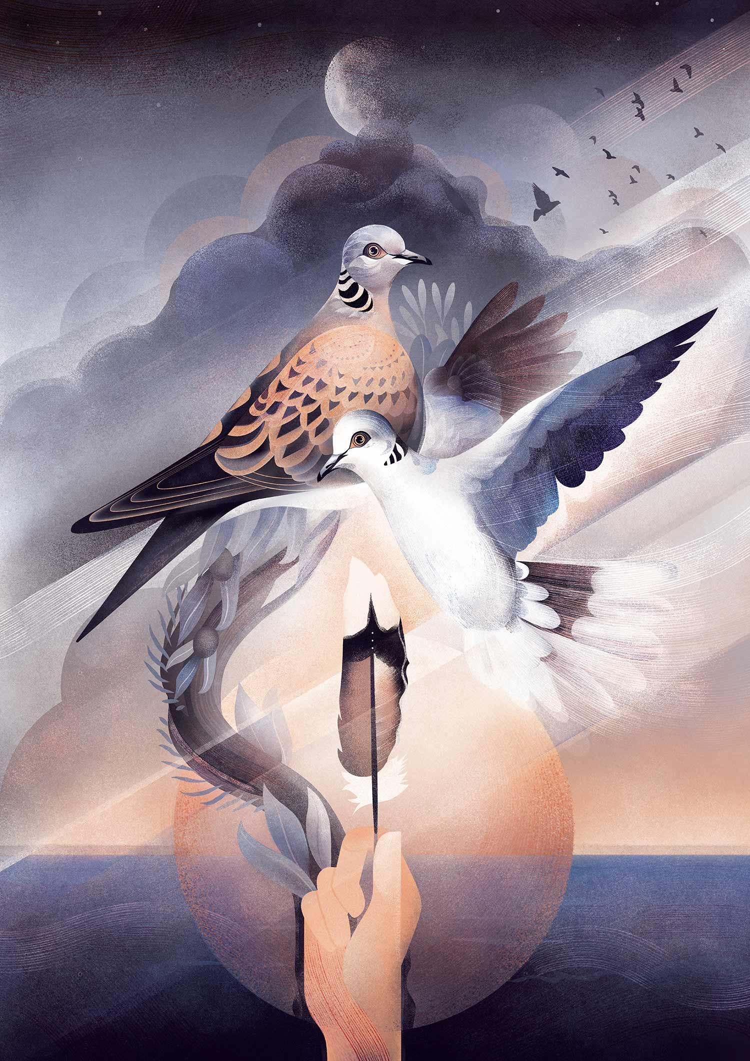 turtle_doves_karla_sanders_illustration.jpg