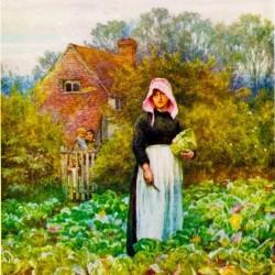 Maid painting cabbage.jpg