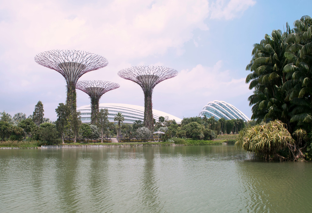 Singapore_1-XL.jpg