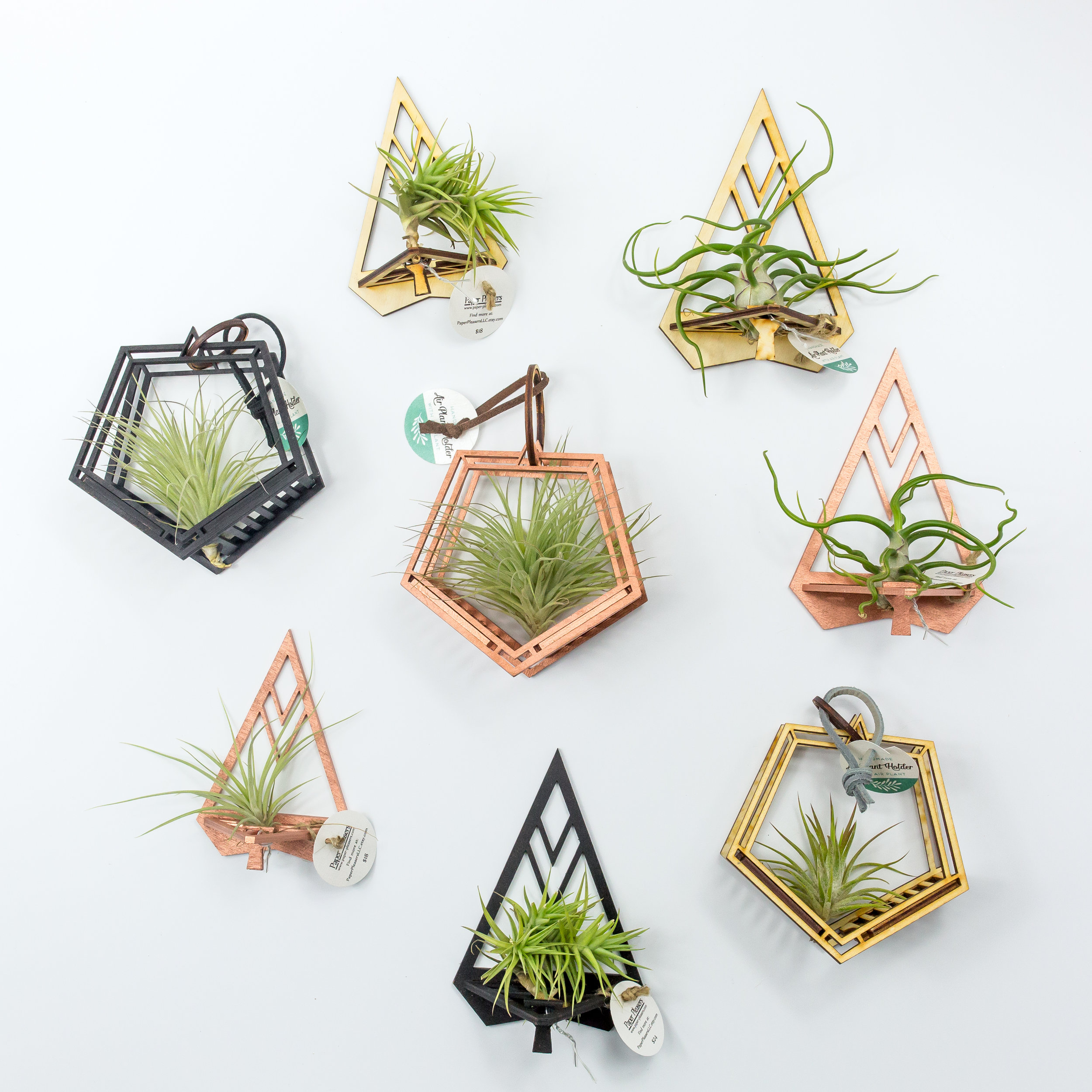 Shop Geometric Airplant Holders Here