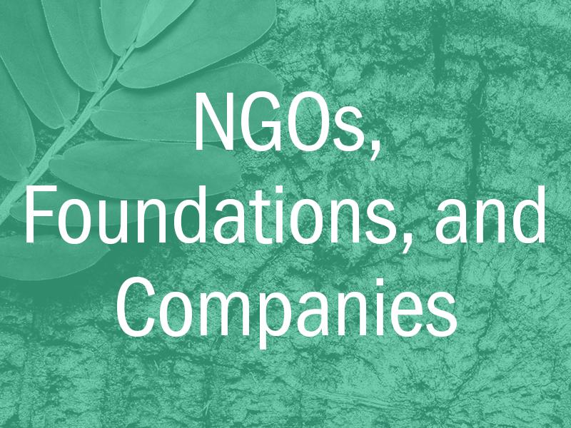 NGOs, foundations, companies
