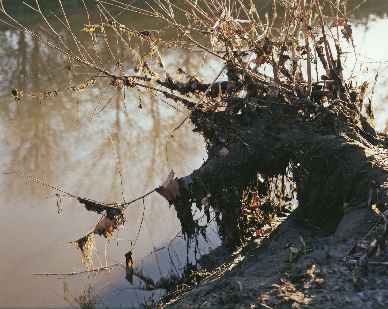 Untitled-River Lea-2.jpg