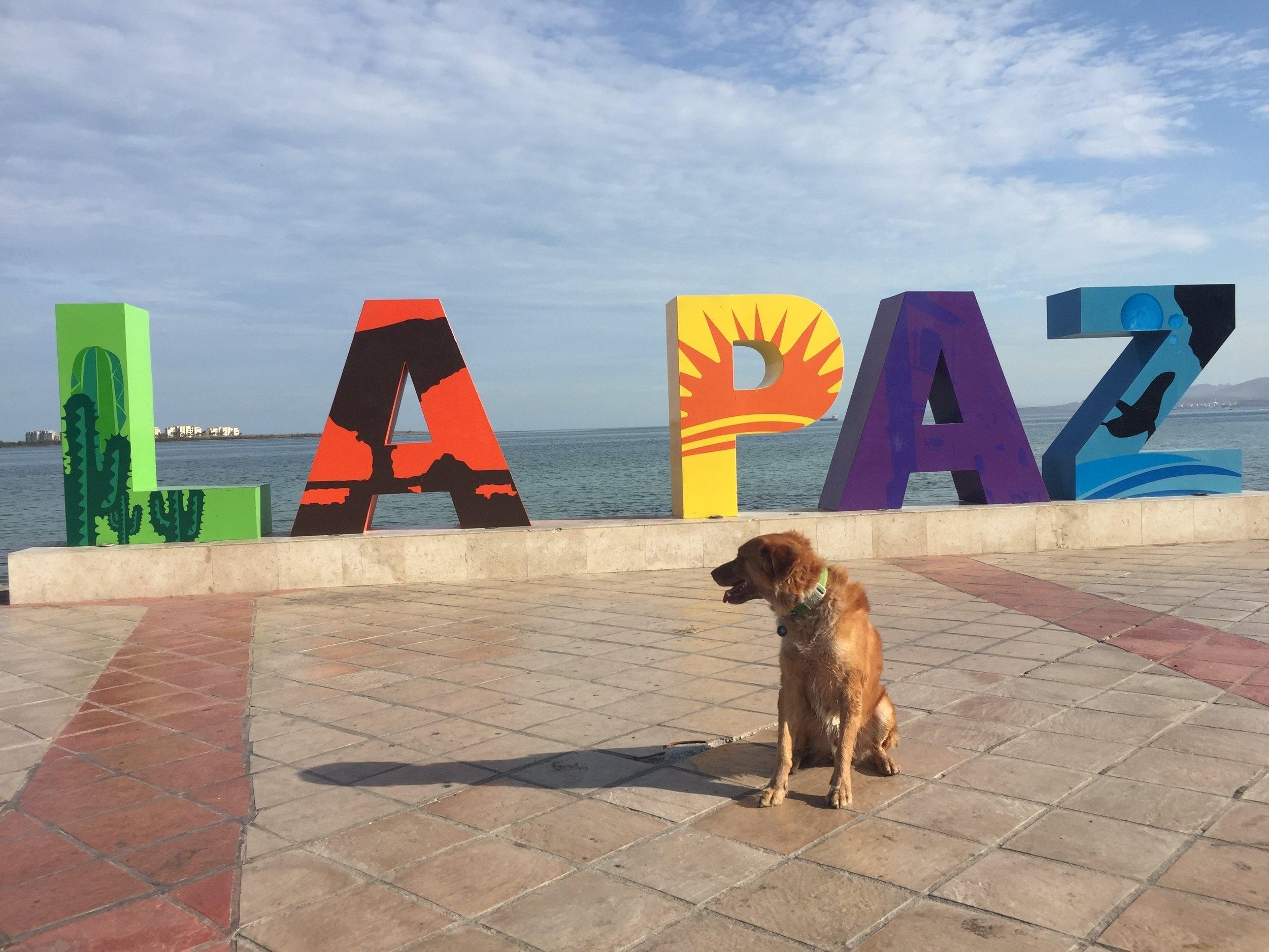 Baja 2017