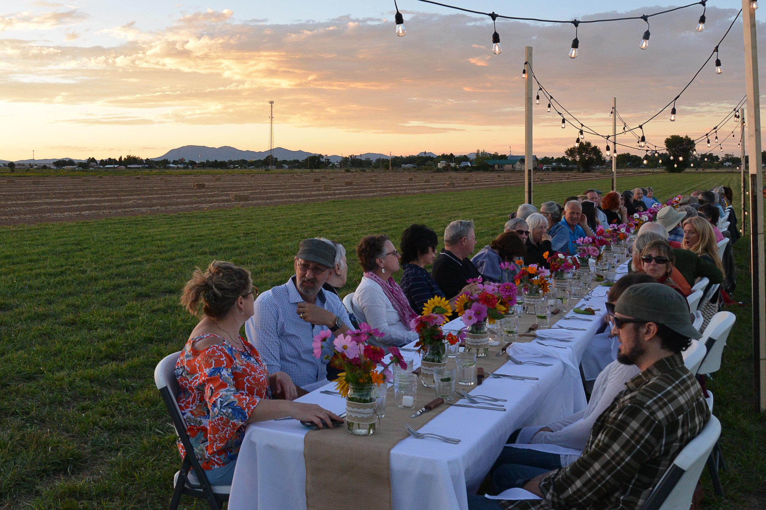 dinner in field (7 of 7).jpg