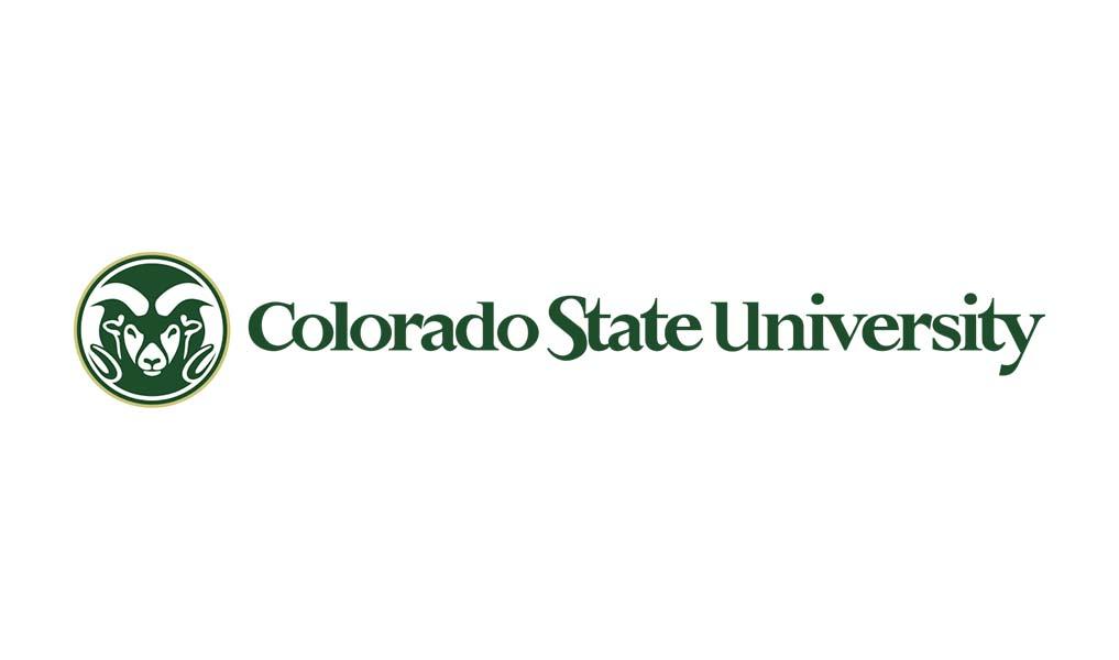 Copy of Colorado State University