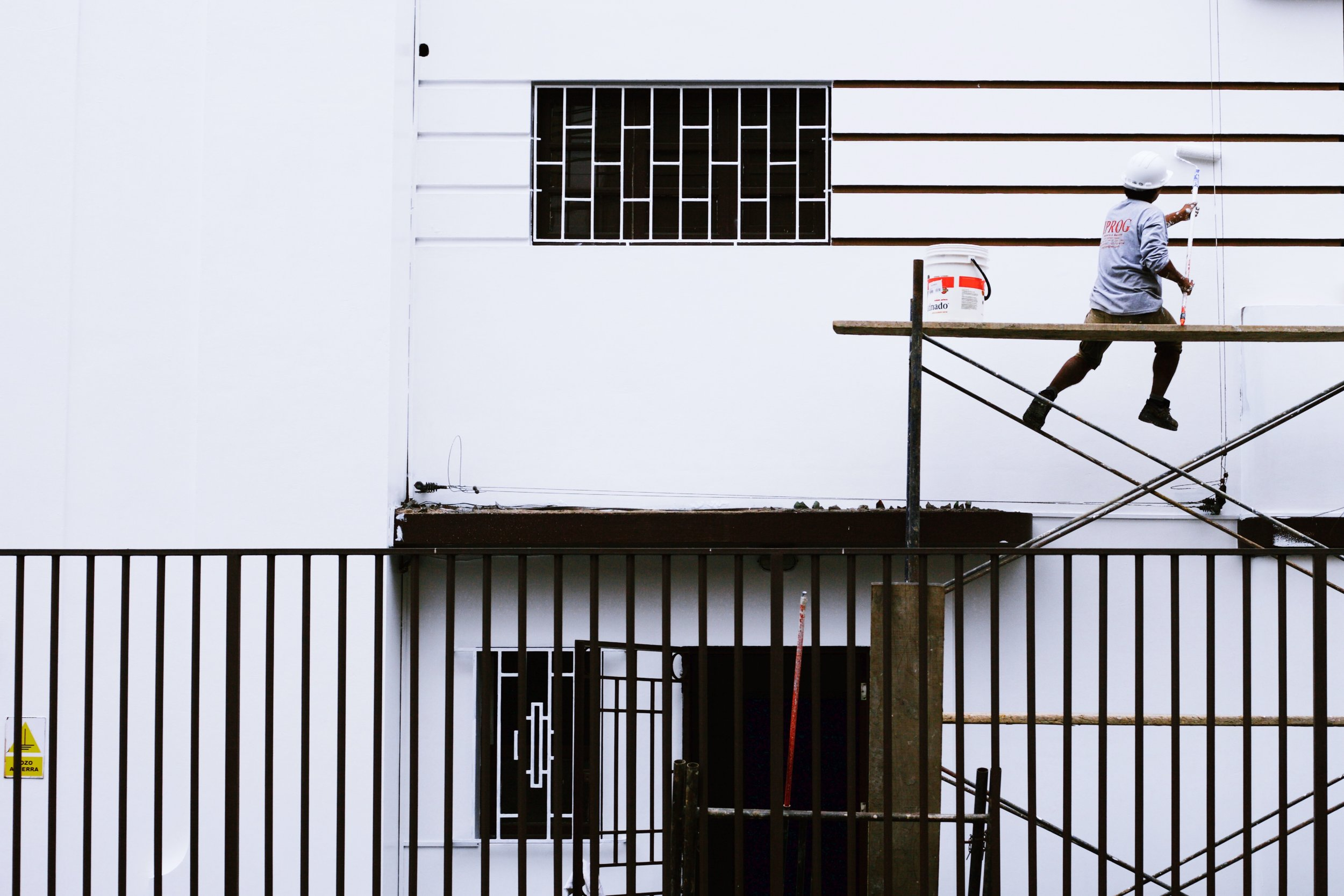 Peru Painter 2016.jpg