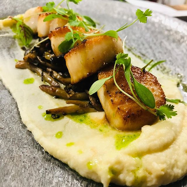 "From our all new spring menu. Day boat scallops out of Point Pleasant, celeriac puree, beech mushroom, lemon oil & cilantro.  Make your reservation now on OpenTable in our Bio by clicking ""reserve"" or call 732-250-8788!"