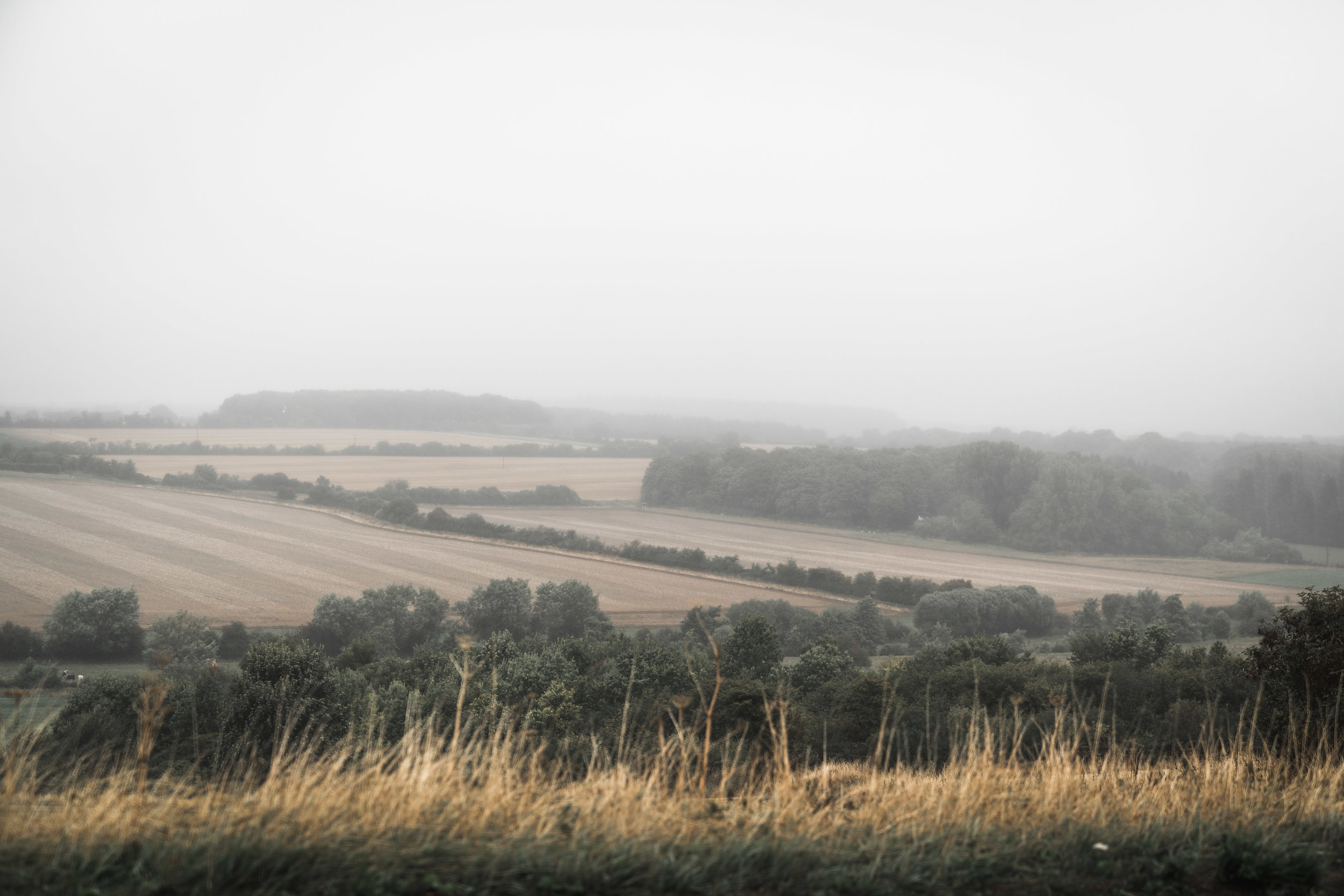 Foggy hills in the Cotswolds