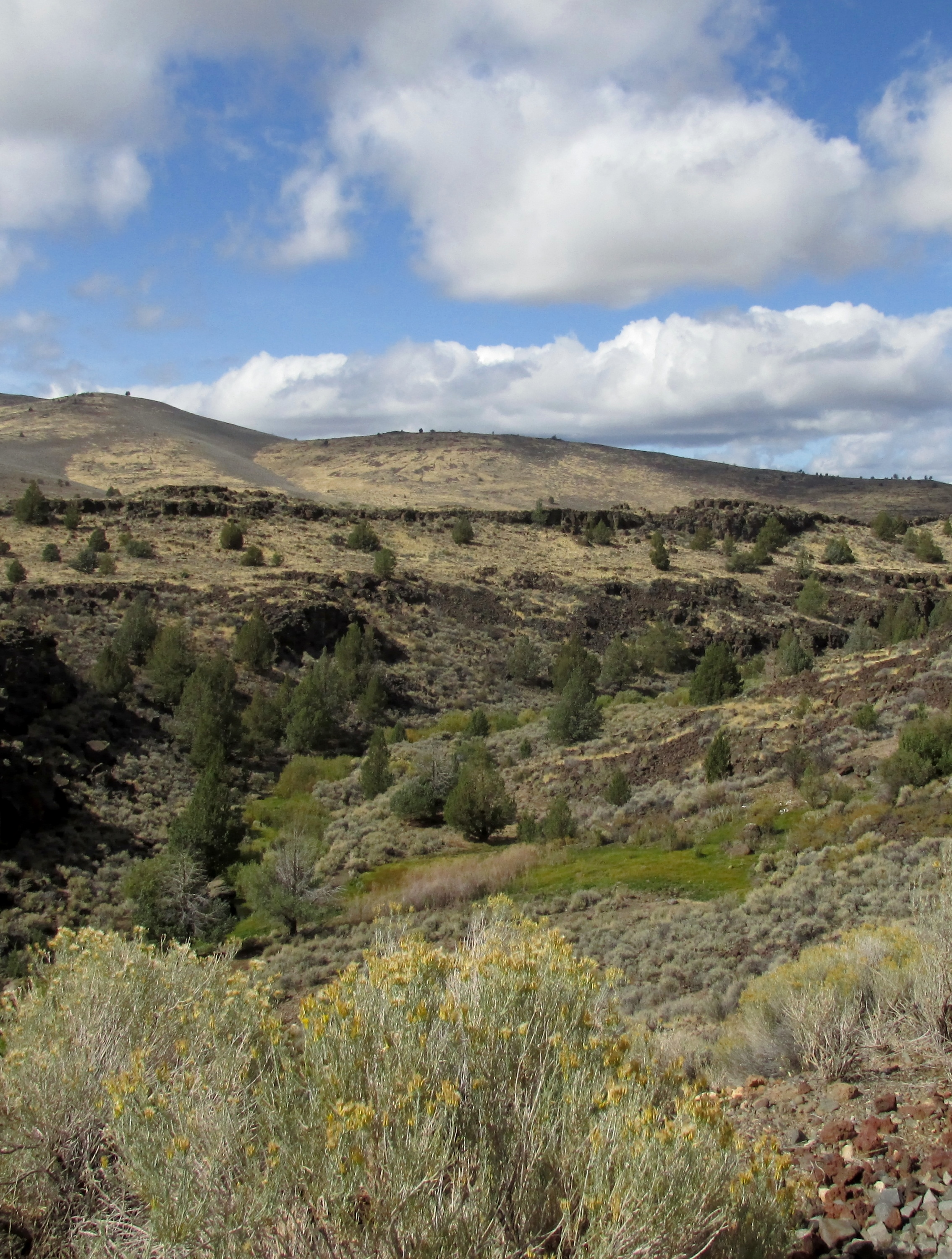 Modoc Line Rail Trail - Our partner in conservation, Rails-to-Trails Conservancy has put together a wonderful link full of reviews and information. Click the button to open.