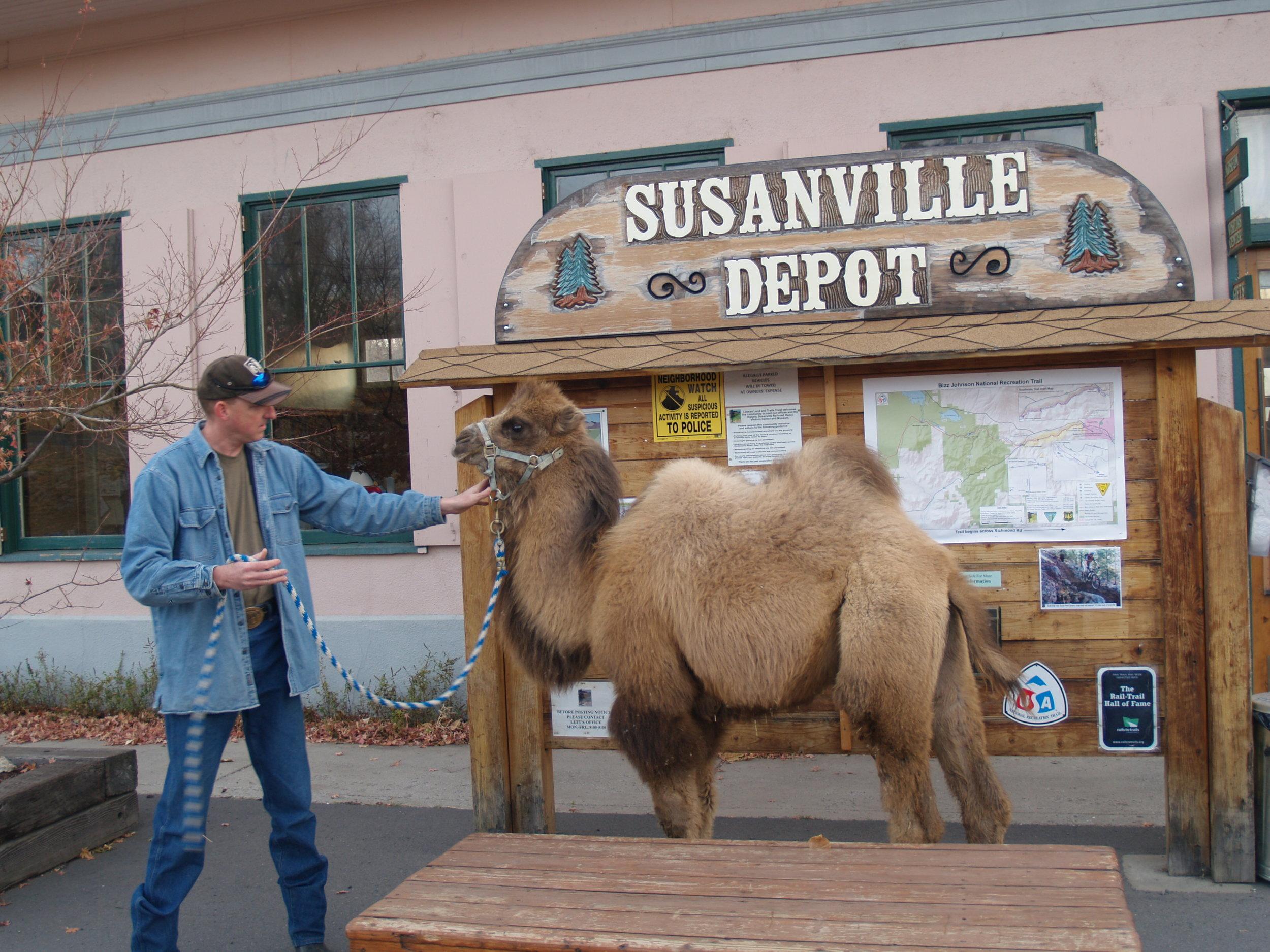 Depot_Camel 5.JPG
