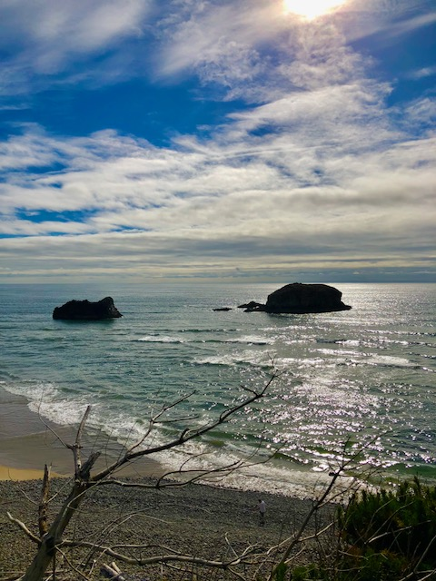 Gull Rock is just south of Arch Cape in Cove Beach.