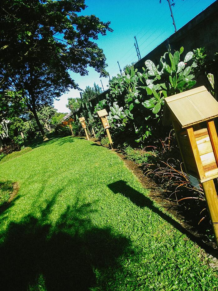 Meliponario modelo ubicado en los jardines del Hotel Bougainvillea en Santo Domingo de Heredia.