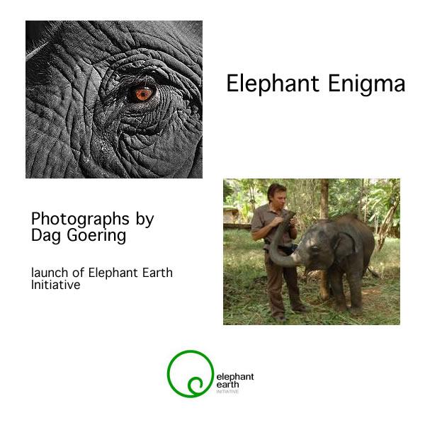 Dag Goering - ELEPHANT ENIGMA Oct 3 - 21 2014