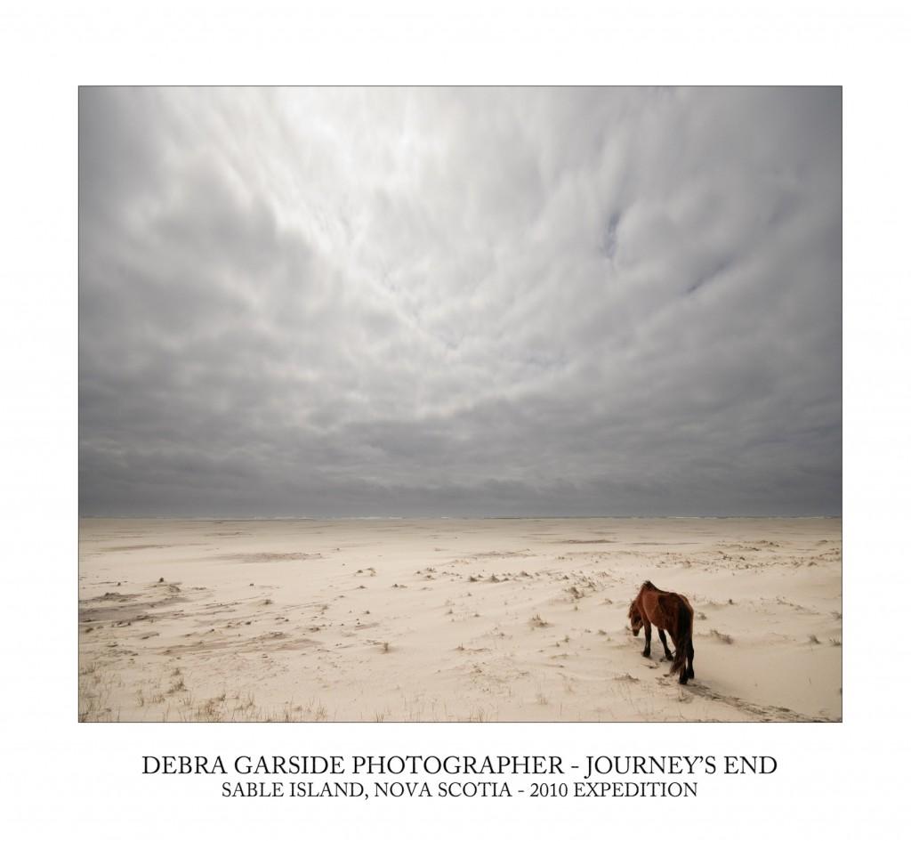 Debra Garside - THE WILD HORSES OF SABLE ISLAND Nov 4 - 26 2010