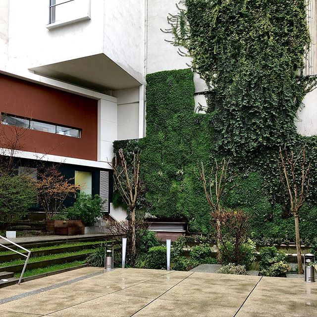 I'm heavily inspired and intrigued by architecture that displays shape and form. The integrated greenery is the perfect touch of color, complimenting the overall design!
