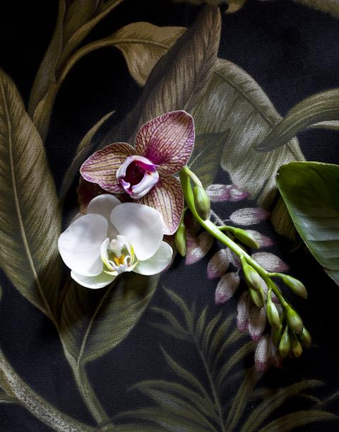 floral-.jpg