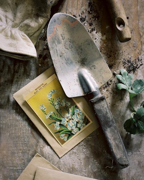 garden-.jpg