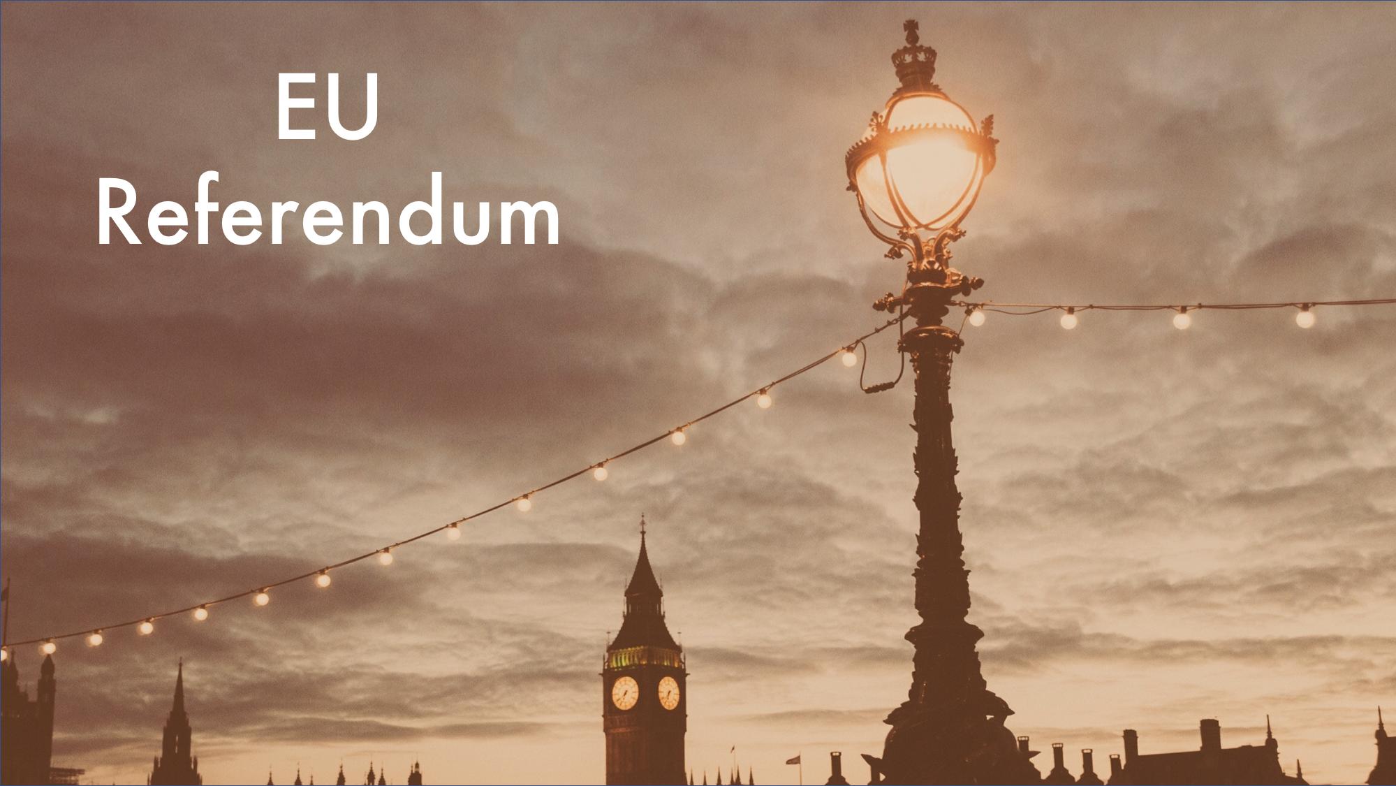 EU Referendum.png