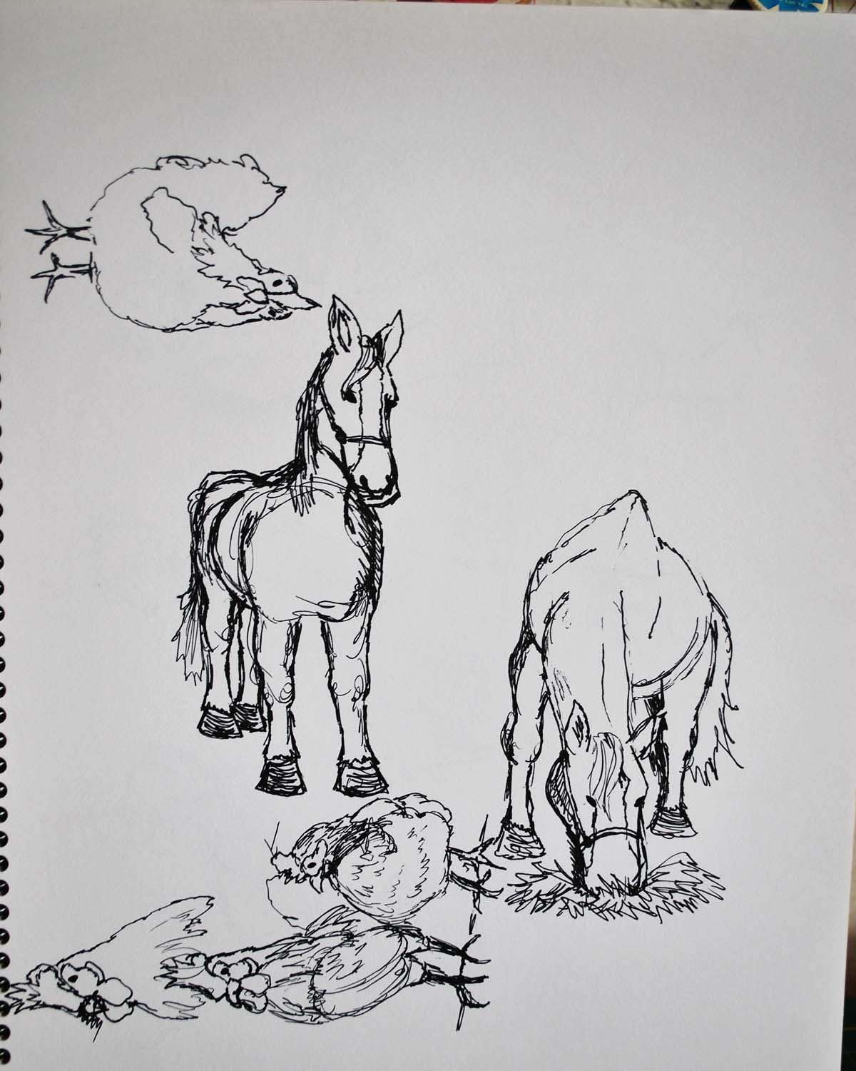 chickens and horses for a possible barnyard picture book...