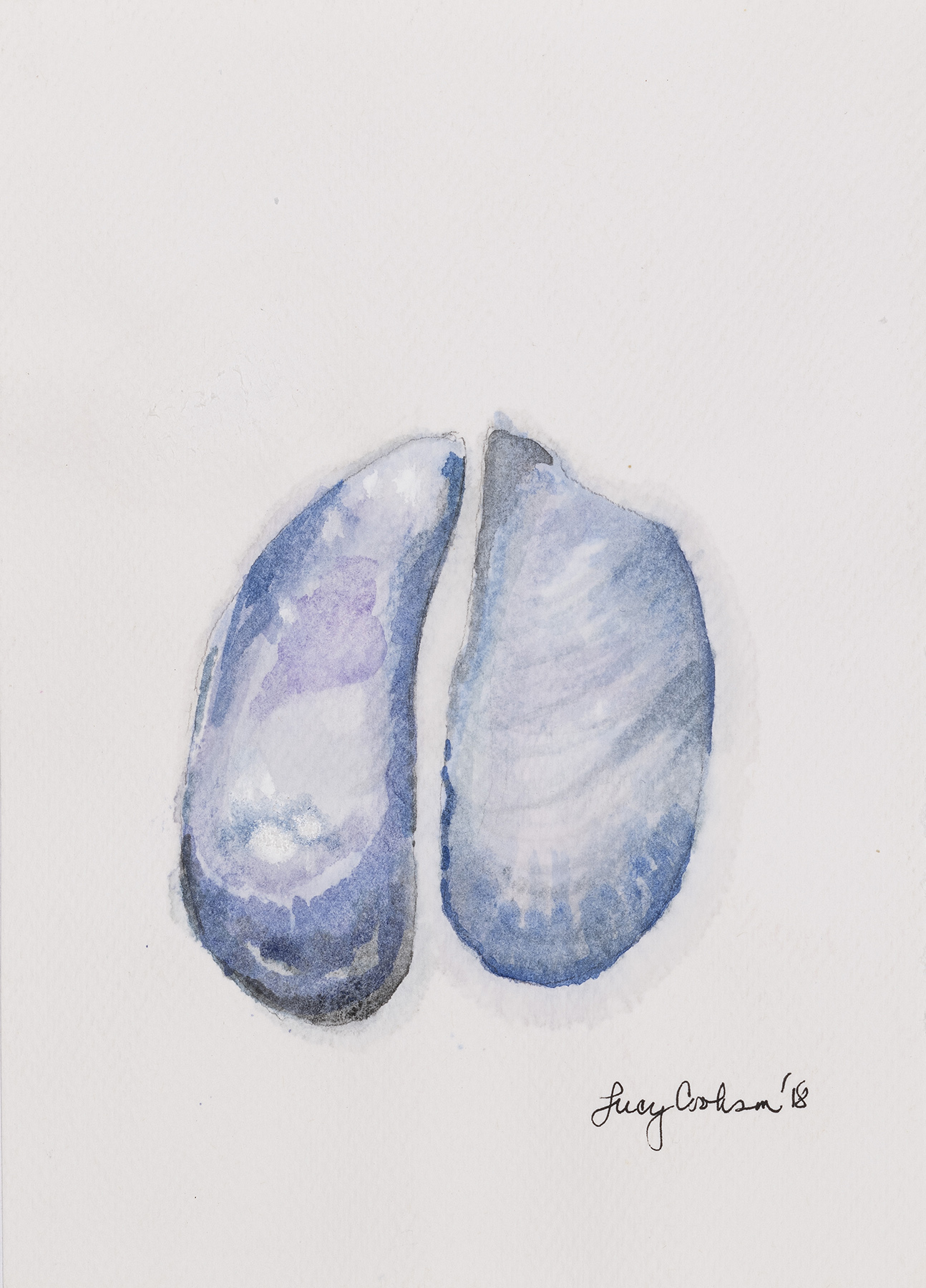 Mussels, 2018, Watercolor on paper, 8 x 6 in.