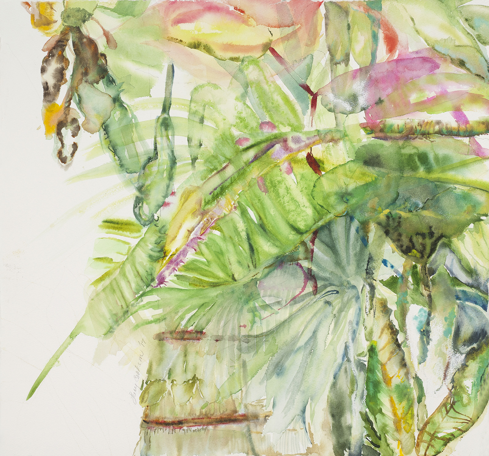 Palm and Heliconia, 2017, Watercolor on paper, 30 x 31 in.