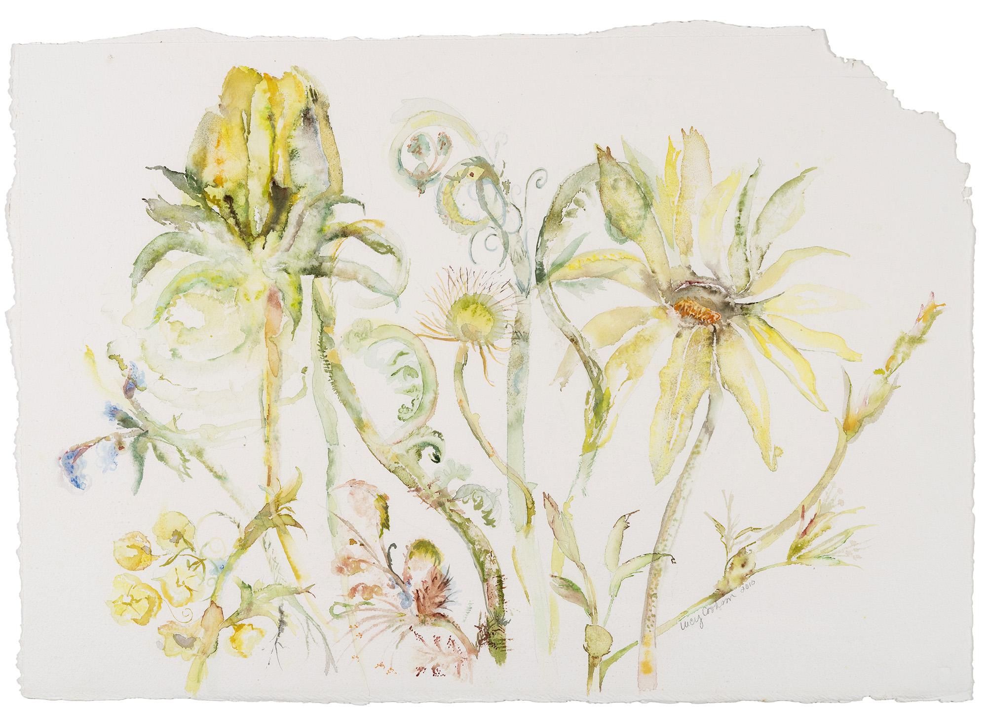 Deena's Calypso, 2010, Watercolor on paper, 38 x 40 in.