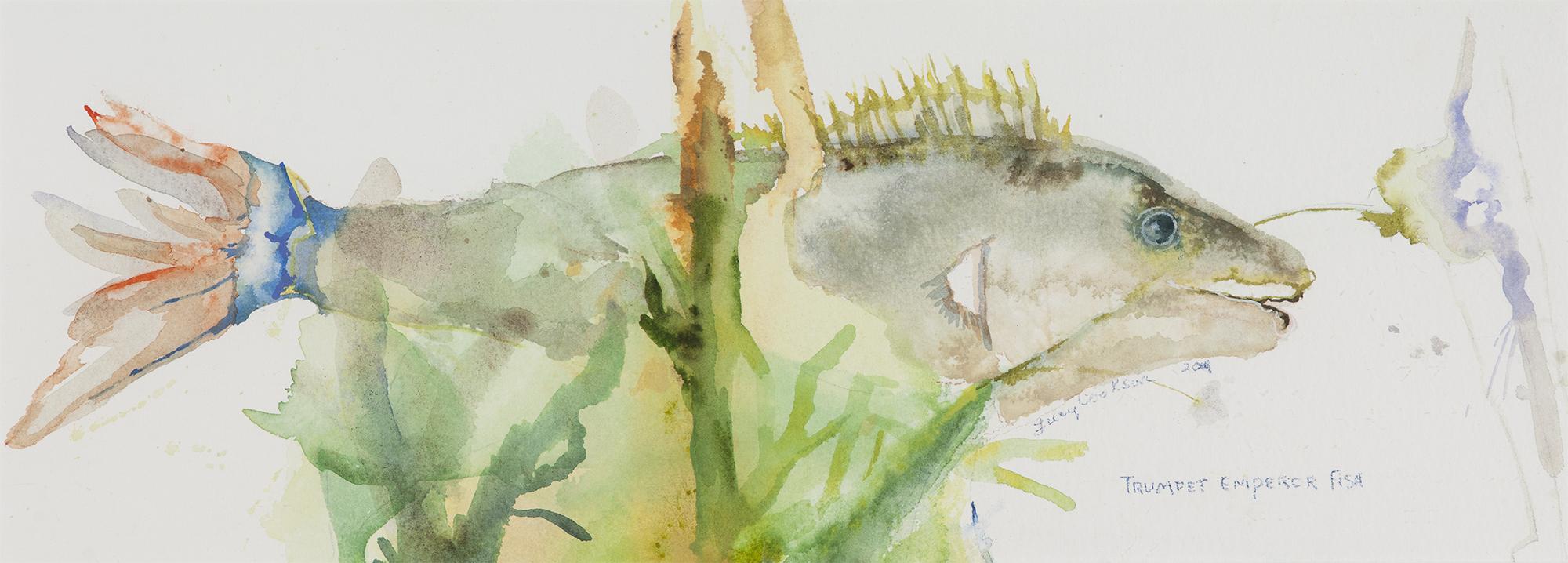 Trumpet Emperor Fish, 2014, Watercolor on paper, 18 x 30 in.