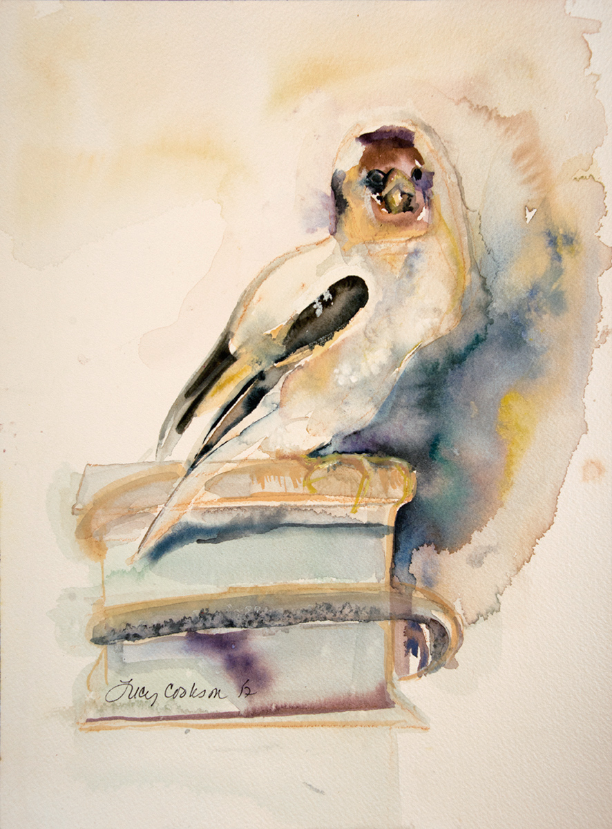 Bird Sitting, 2017, Watercolor on paper, 12 x 9 in.