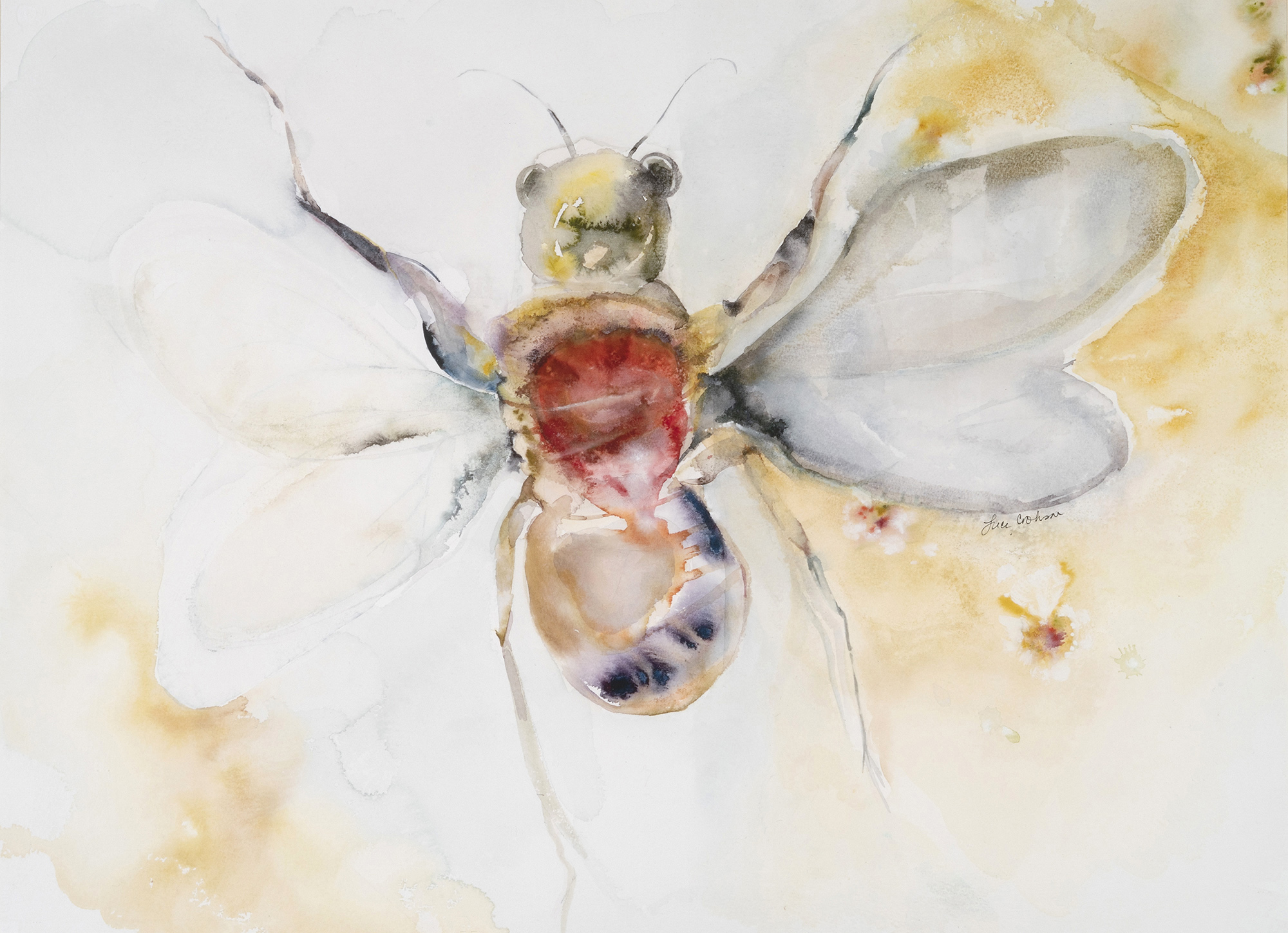 Moth I (Escalation), 2009, Watercolor on paper, 31 x 38 in.