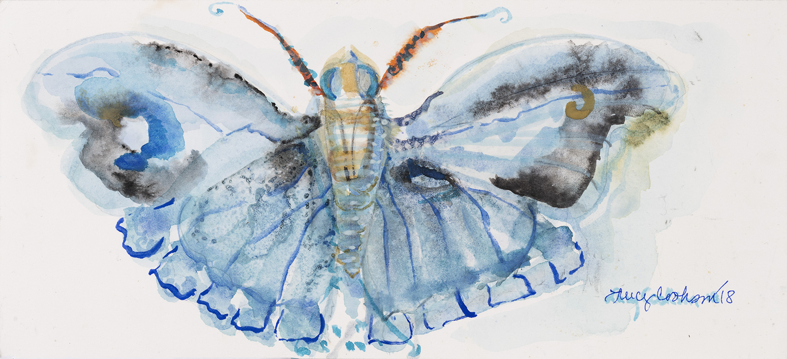 Blue Moth, 2018, Watercolor on paper, 4 x 10 in.