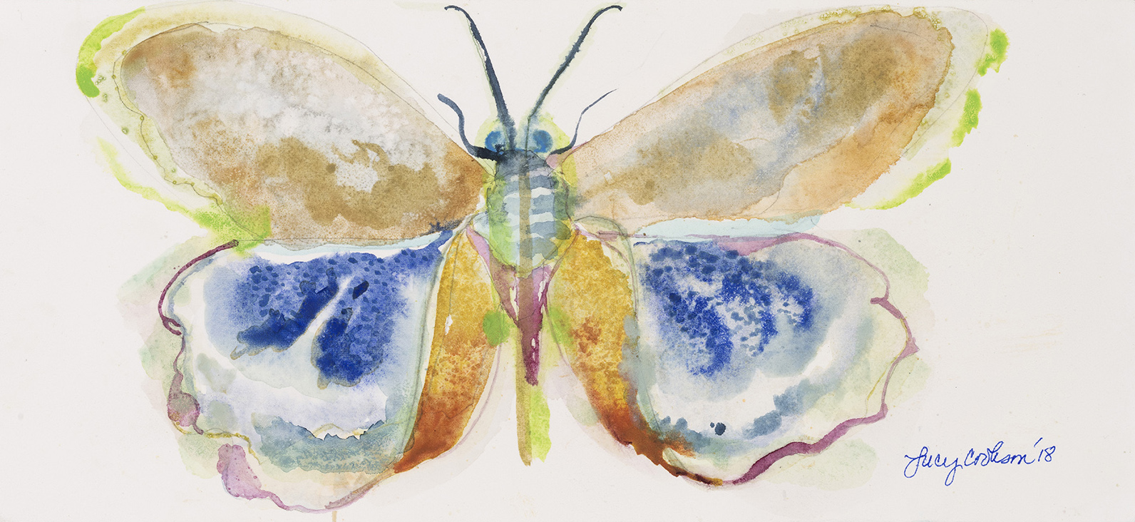 Butterfly, 2018, Watercolor on paper, 4 x 10 in.
