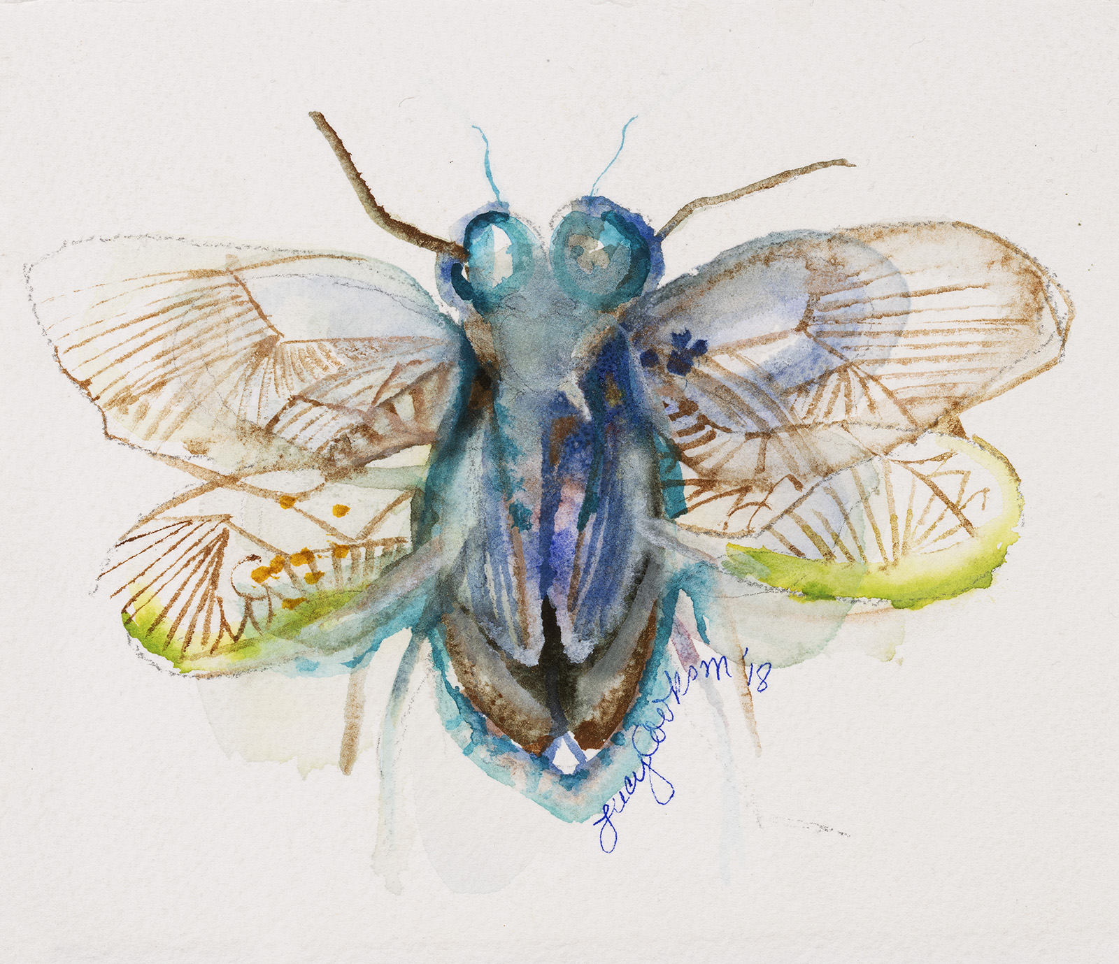 Bug, 2018, Watercolor on paper, 9 x 12 in.