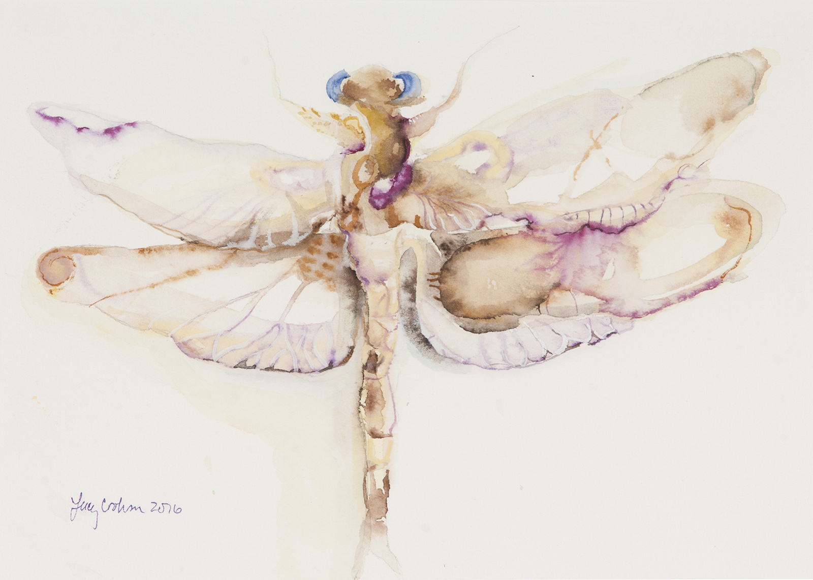 Dragonfly, 2016, Watercolor on paper, 9 x 12 in.