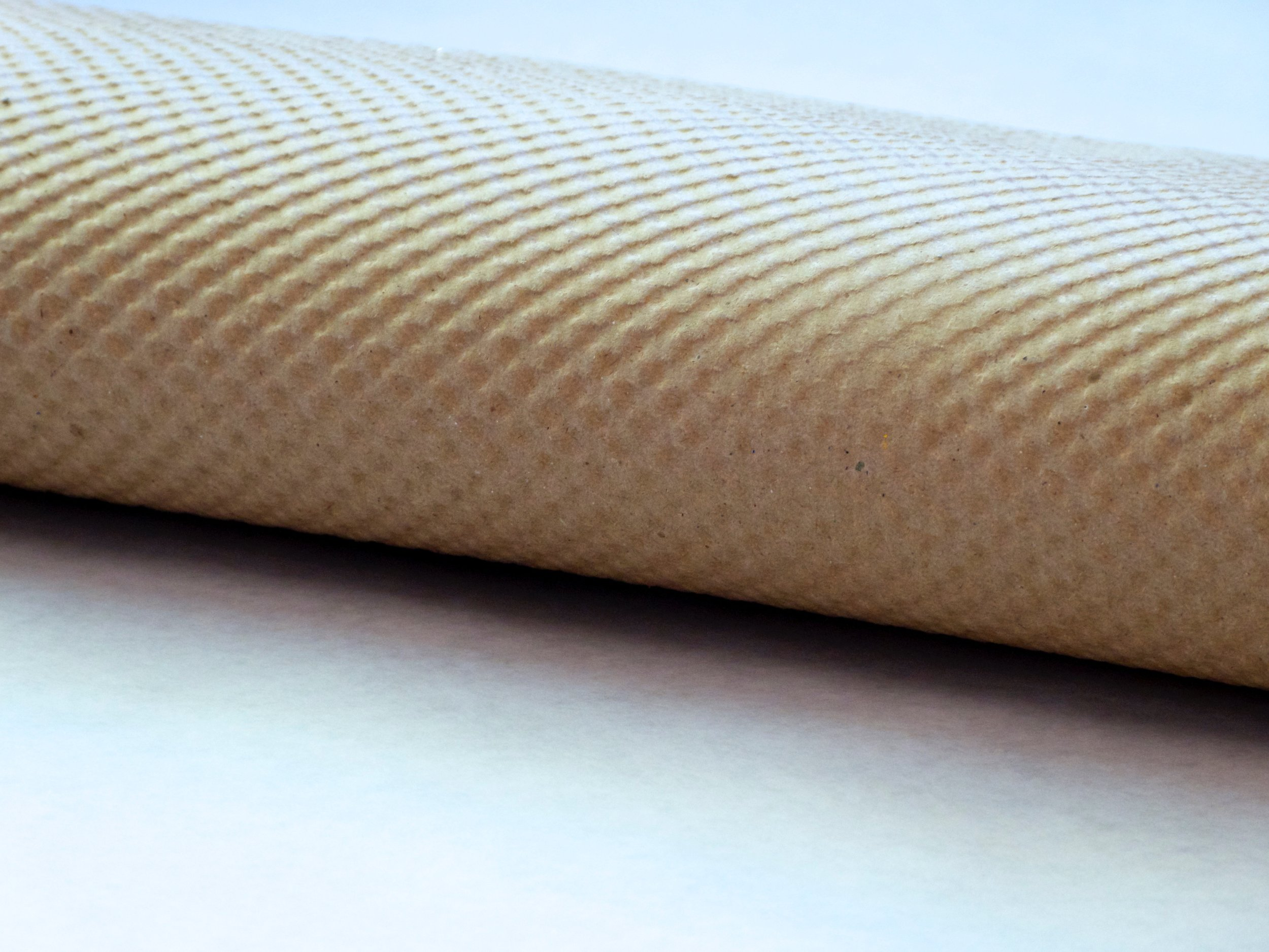 Chick Feed Roll sheet.jpg