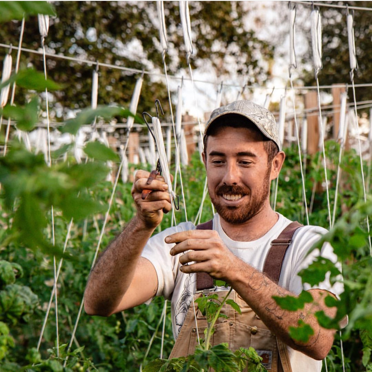Mike Meier  Mike is manager of Colab Farms, a hydroponic specialty veg farm in Martin County, FL. Previously, they were cofounder and farmer at Ground Floor Farm in Stuart, farmer at Seven Arrows Farm in NJ, and farm manager of Brooklyn Grange in NYC.