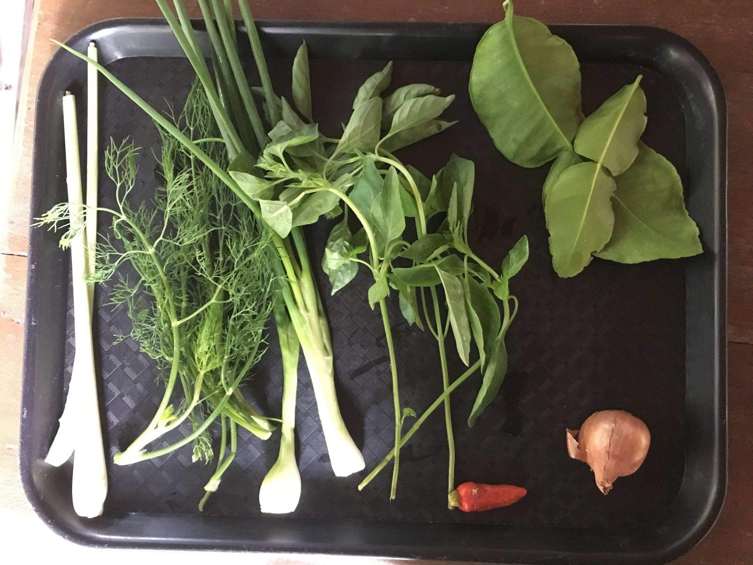 The flavors of Laos: chili peppers, lemongrass, shallots, kefir leaves, Thai basil, and dill