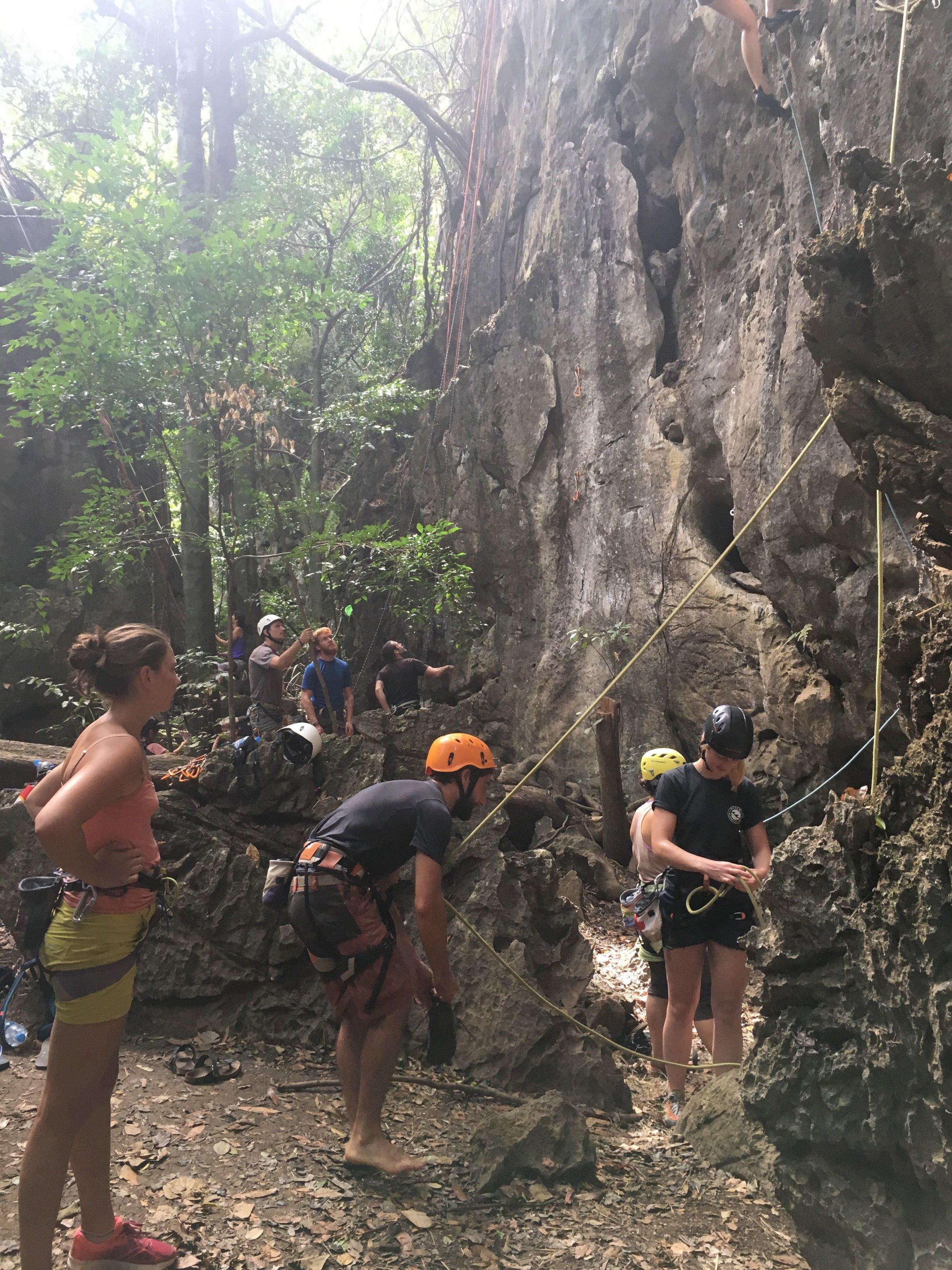 Thakek Green Climbers |Regina Beach