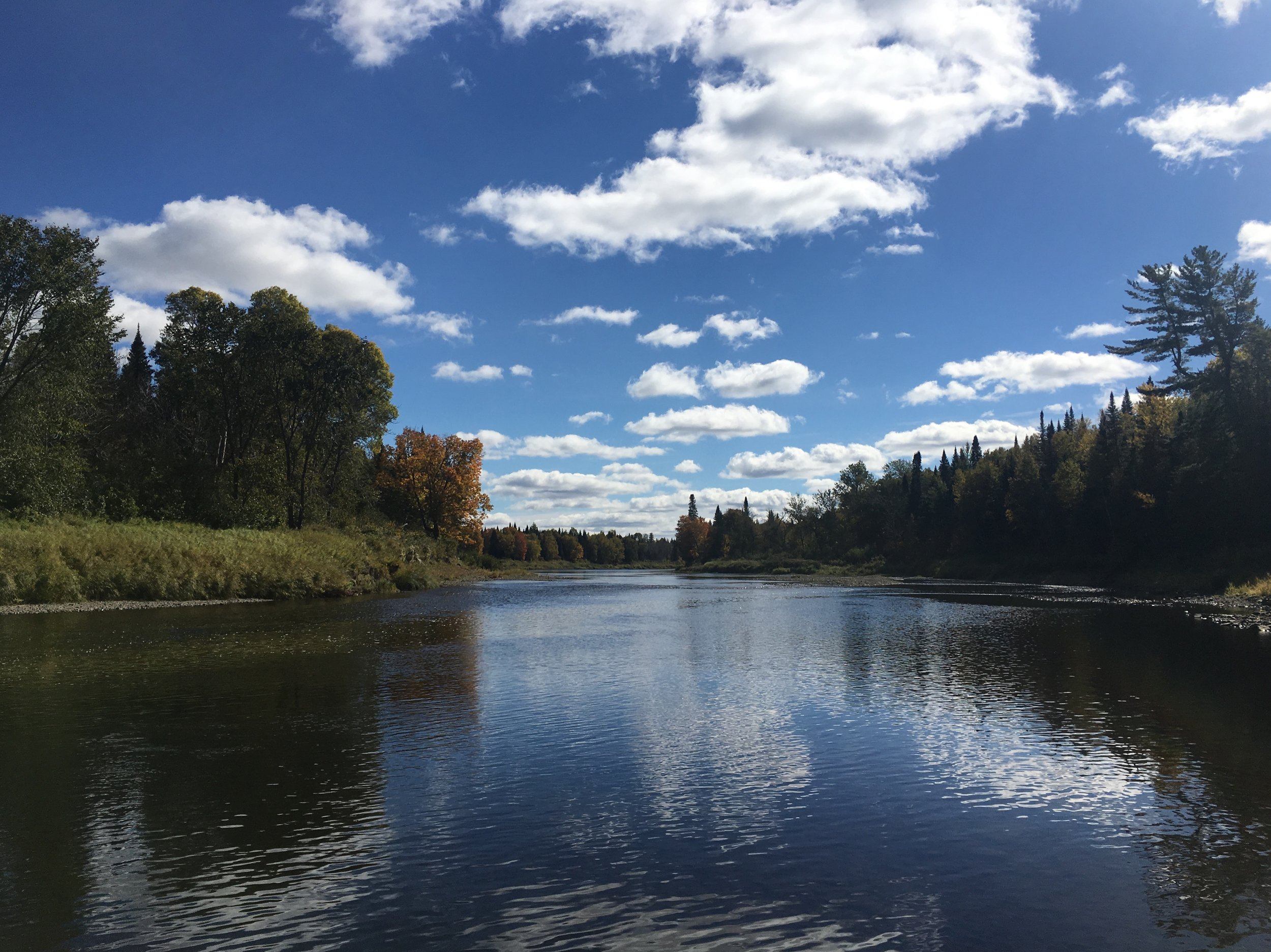 The Aroostook River is an undisturbed, beautiful body of water.